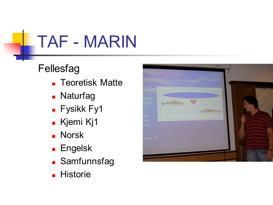 TAF - MARIN Programfag Naturbasert produksjon vg1 Naturbasert aktivitet vg1 Akvakultur vg2 Drift og Produksjon Anlegg og Teknikk Oppdrett og Miljø Vi legger vekt på Marinbiologi og Fiske økologi
