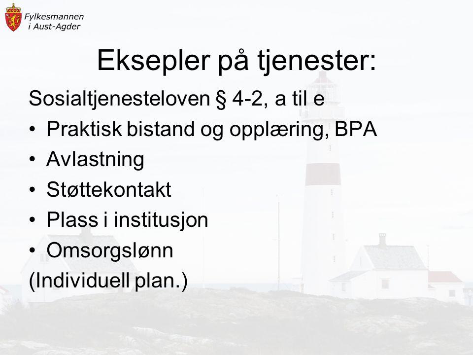 Eksepler på tjenester: Sosialtjenesteloven § 4-2, a til e Praktisk bistand og opplæring, BPA Avlastning Støttekontakt Plass i institusjon Omsorgslønn