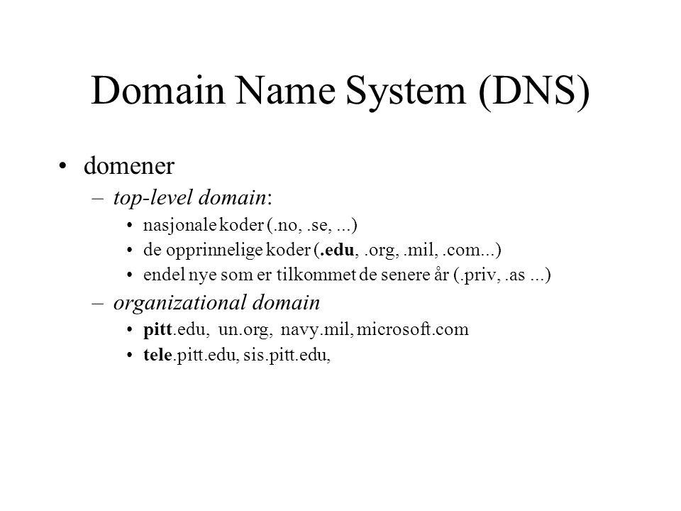 Domain Name System (DNS) domener –top-level domain: nasjonale koder (.no,.se,...) de opprinnelige koder (.edu,.org,.mil,.com...) endel nye som er tilk