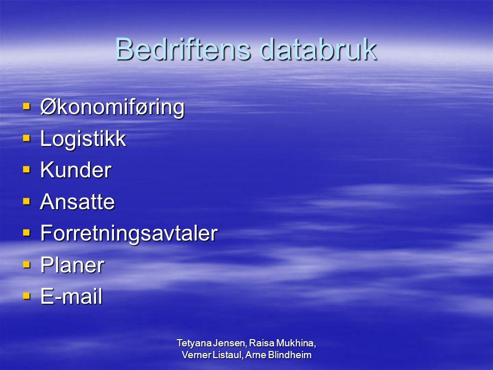 Tetyana Jensen, Raisa Mukhina, Verner Listaul, Arne Blindheim Bedriftens databruk  Økonomiføring  Logistikk  Kunder  Ansatte  Forretningsavtaler  Planer  E-mail