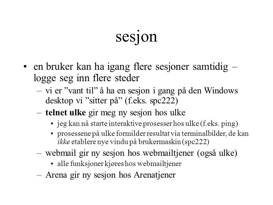 sesjon en bruker kan ha igang flere sesjoner samtidig – logge seg inn flere steder –vi er vant til å ha en sesjon i gang på den Windows desktop vi sitter på (f.eks.