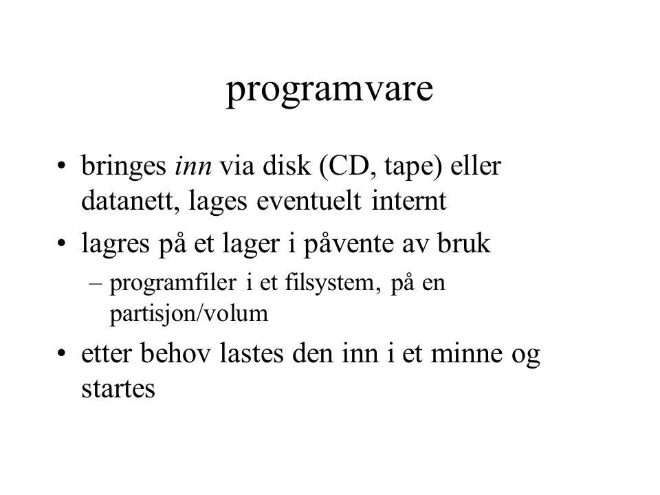programvare bringes inn via disk (CD, tape) eller datanett, lages eventuelt internt lagres på et lager i påvente av bruk –programfiler i et filsystem, på en partisjon/volum etter behov lastes den inn i et minne og startes