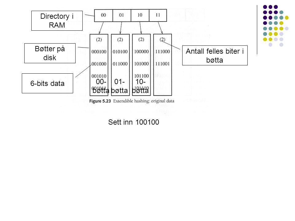 Sett inn 100100 Directory i RAM Bøtter på disk Antall felles biter i bøtta 6-bits data 01- bøtta 00- bøtta 10- bøtta