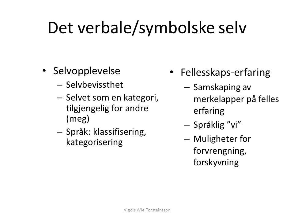 Det verbale/symbolske selv Selvopplevelse – Selvbevissthet – Selvet som en kategori, tilgjengelig for andre (meg) – Språk: klassifisering, kategoriser
