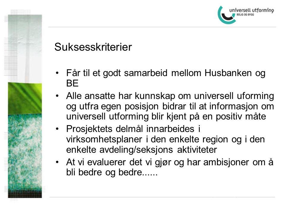 Strategi for å få temaet i grunnutdanningen NTNU BAS Arkitekthøgskolen i Oslo UMB Høgskoler Bachelor - Master Stipendiatstillinger Professor II stillinger Studentstipend Aktivittsplan 2006