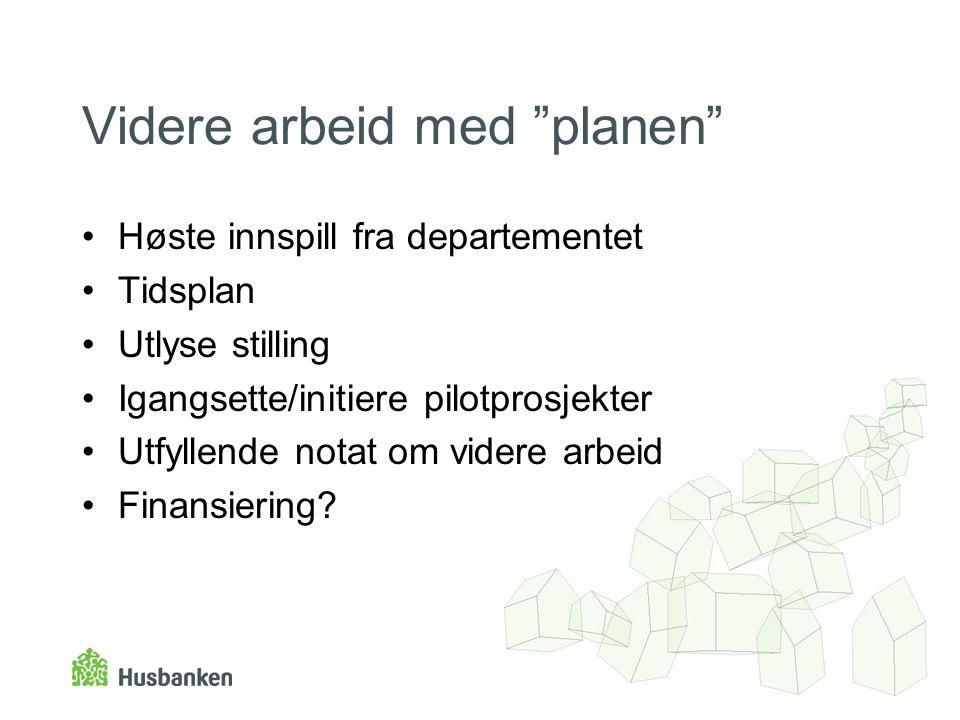 Videre arbeid med planen Høste innspill fra departementet Tidsplan Utlyse stilling Igangsette/initiere pilotprosjekter Utfyllende notat om videre arbeid Finansiering