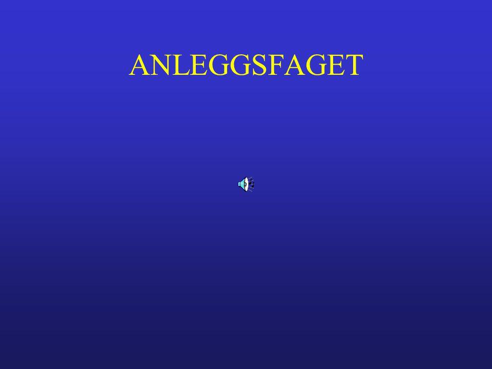 ANLEGGSFAGET