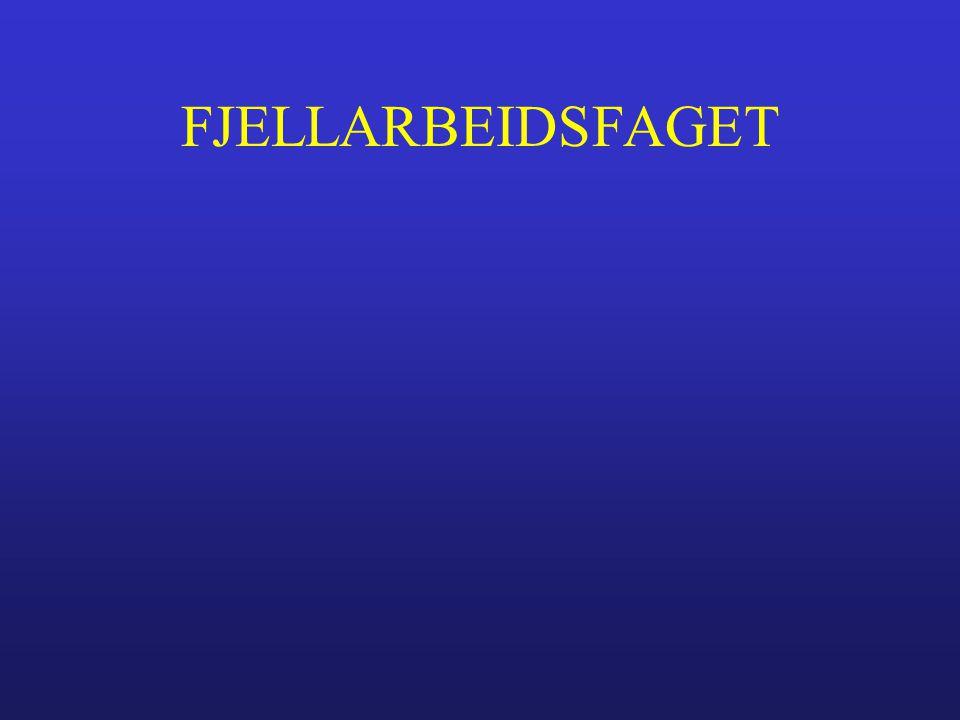 FJELLARBEIDSFAGET