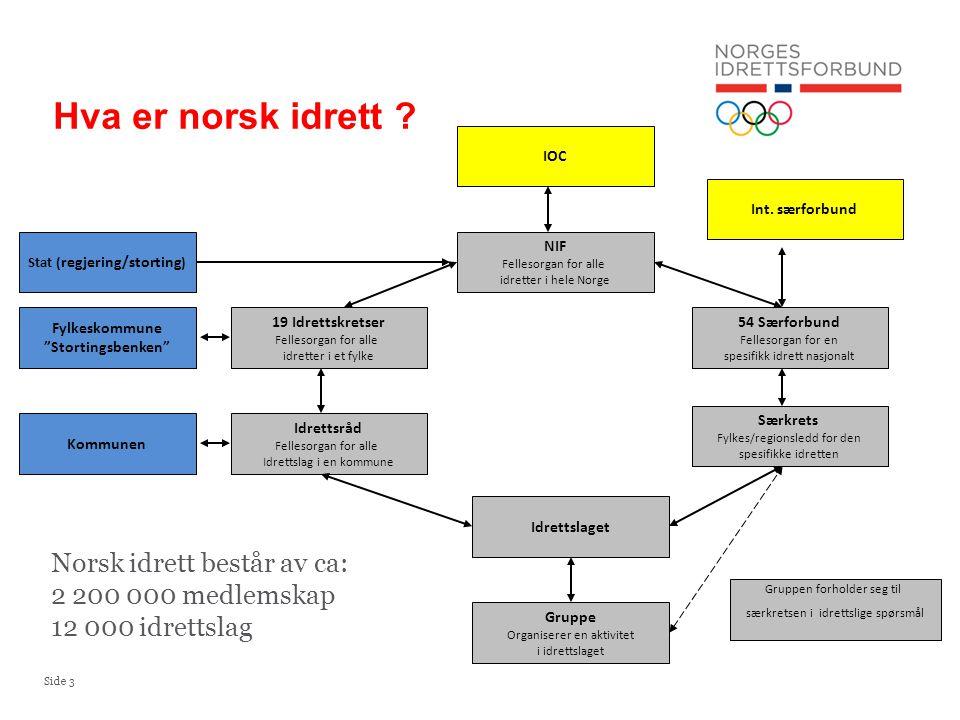Side 3 NIF Fellesorgan for alle idretter i hele Norge 54 Særforbund Fellesorgan for en spesifikk idrett nasjonalt Gruppe Organiserer en aktivitet i id