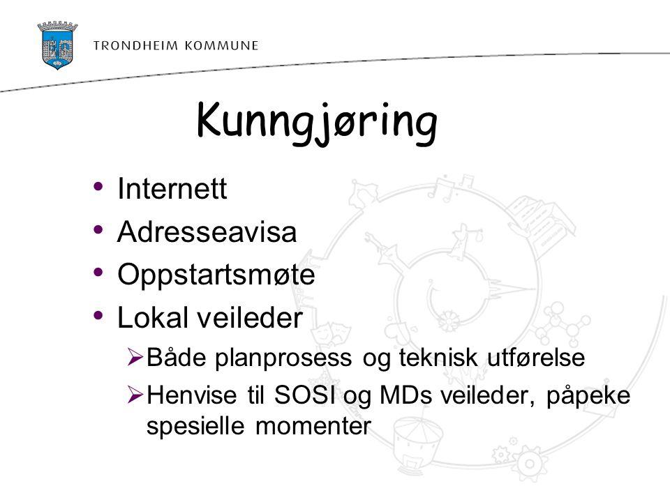 Kunngjøring Internett Adresseavisa Oppstartsmøte Lokal veileder  Både planprosess og teknisk utførelse  Henvise til SOSI og MDs veileder, påpeke spe