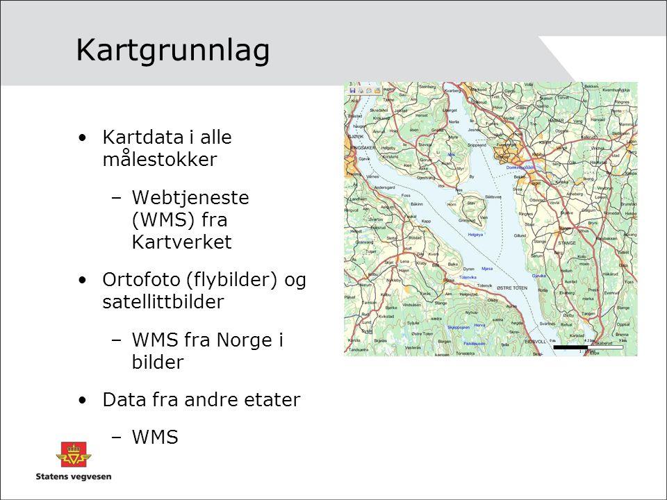 Kartdata i alle målestokker –Webtjeneste (WMS) fra Kartverket Ortofoto (flybilder) og satellittbilder –WMS fra Norge i bilder Data fra andre etater –WMS Kartgrunnlag