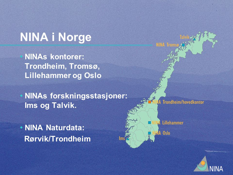 NINA i Norge NINAs kontorer: Trondheim, Tromsø, Lillehammer og Oslo NINAs forskningsstasjoner: Ims og Talvik.