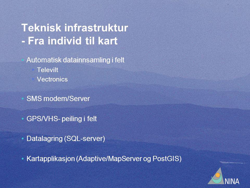 Teknisk infrastruktur - Fra individ til kart Automatisk datainnsamling i felt Televilt Vectronics SMS modem/Server GPS/VHS- peiling i felt Datalagring (SQL-server) Kartapplikasjon (Adaptive/MapServer og PostGIS)