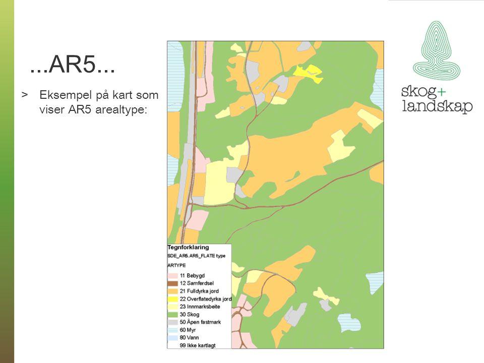 ...AR5... >Eksempel på kart som viser AR5 arealtype: