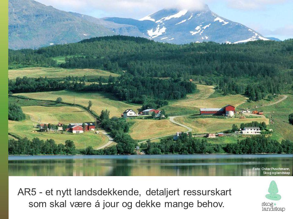 Foto: Oskar Puschmann, Skog og landskap AR5 - et nytt landsdekkende, detaljert ressurskart som skal være á jour og dekke mange behov.