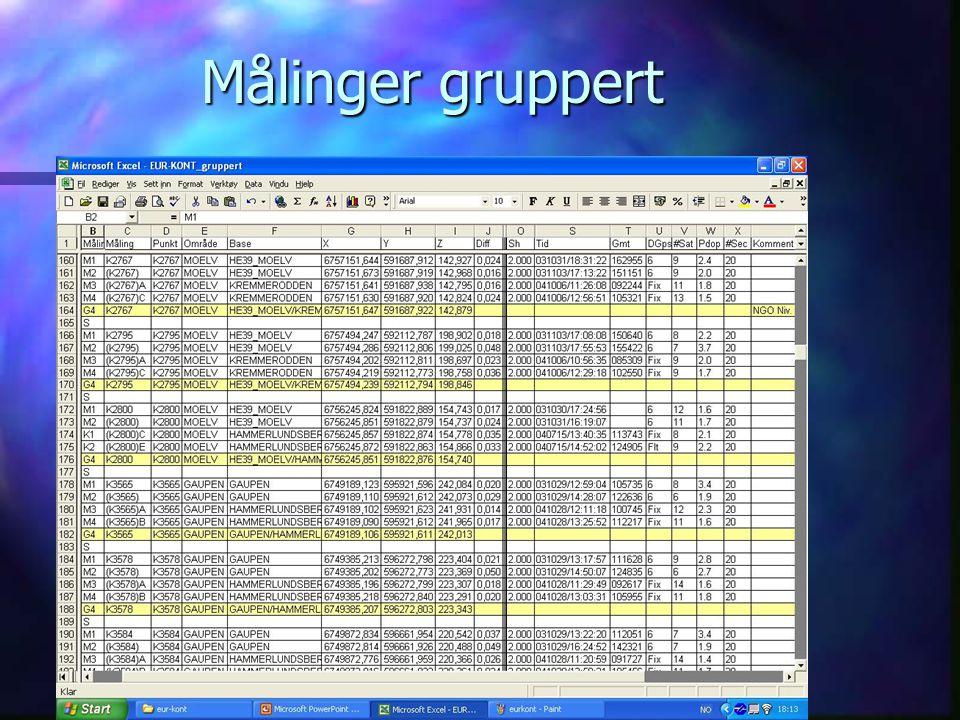 RINGSAKER KOMMUNE Målinger gruppert