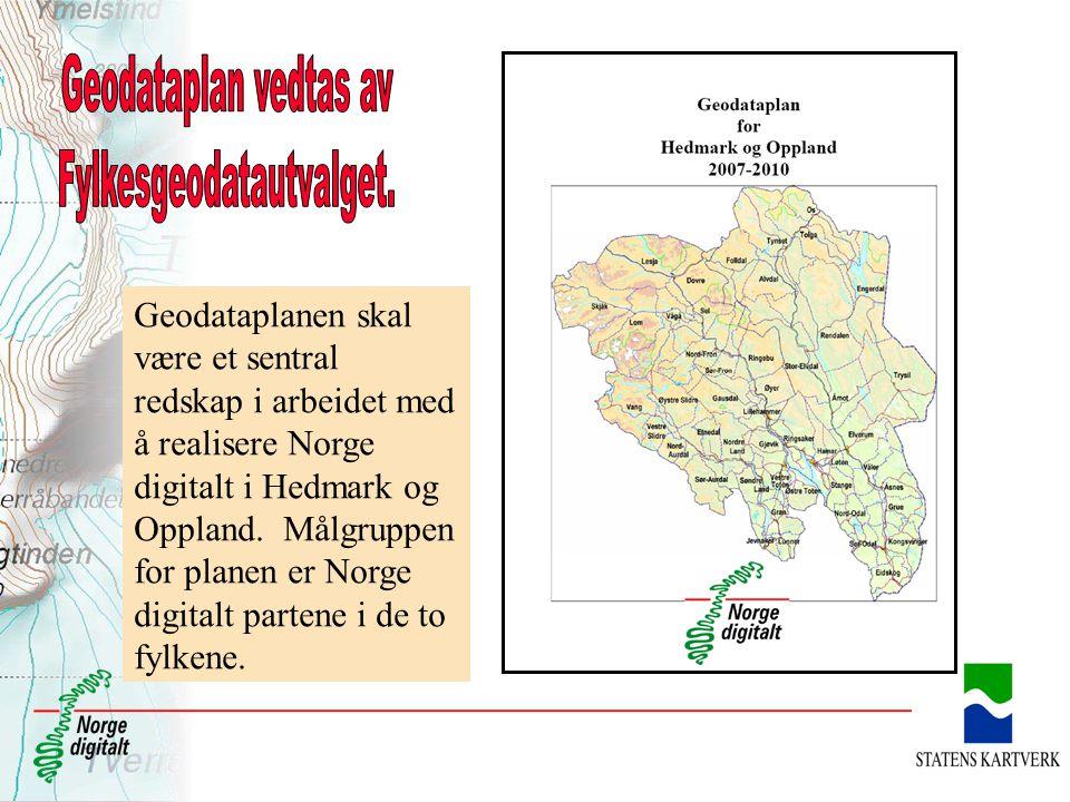 Geodataplanen skal være et sentral redskap i arbeidet med å realisere Norge digitalt i Hedmark og Oppland. Målgruppen for planen er Norge digitalt par