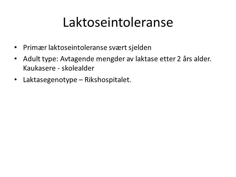 Laktoseintoleranse Primær laktoseintoleranse svært sjelden Adult type: Avtagende mengder av laktase etter 2 års alder. Kaukasere - skolealder Laktaseg