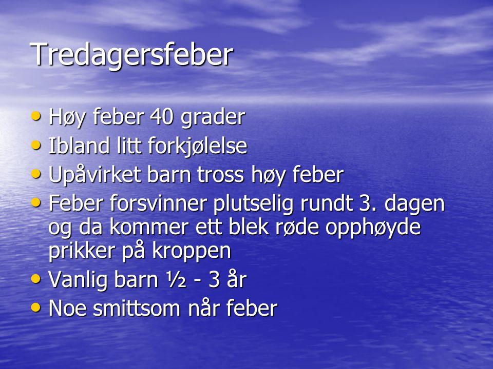 Tredagersfeber Høy feber 40 grader Høy feber 40 grader Ibland litt forkjølelse Ibland litt forkjølelse Upåvirket barn tross høy feber Upåvirket barn t