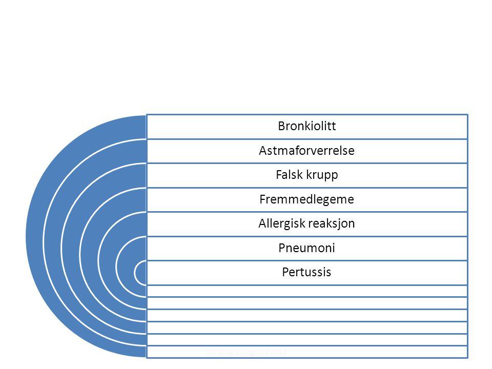 Ulf Wike Ljungblad 2013 Bronkiolitt Astmaforverrelse Falsk krupp Fremmedlegeme Allergisk reaksjon Pneumoni Pertussis