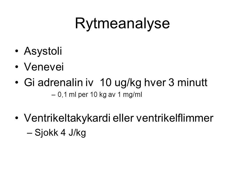 Rytmeanalyse Asystoli Venevei Gi adrenalin iv 10 ug/kg hver 3 minutt –0,1 ml per 10 kg av 1 mg/ml Ventrikeltakykardi eller ventrikelflimmer –Sjokk 4 J