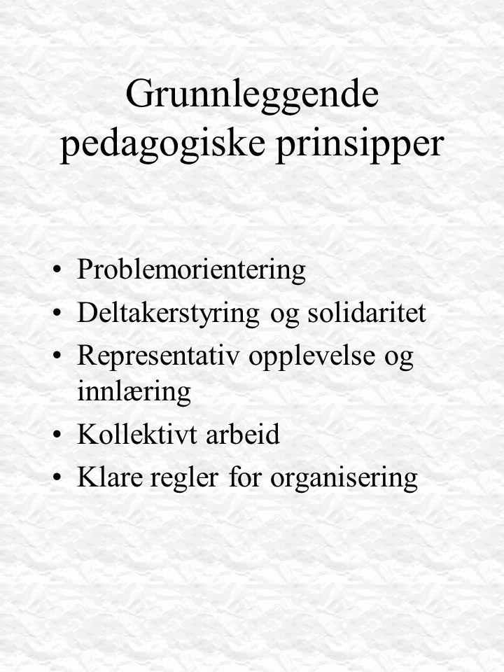Grunnleggende pedagogiske prinsipper Problemorientering Deltakerstyring og solidaritet Representativ opplevelse og innlæring Kollektivt arbeid Klare r