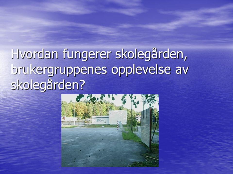 Hvordan fungerer skolegården, brukergruppenes opplevelse av skolegården?