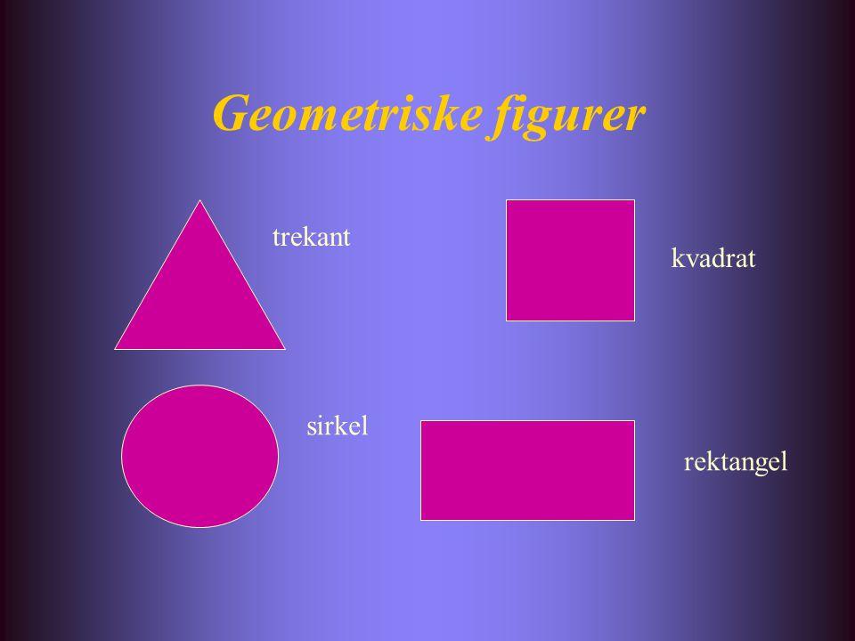 Geometriske figurer trekant kvadrat sirkel rektangel