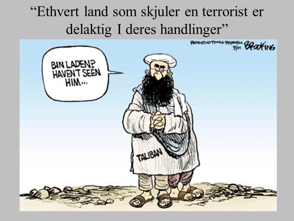 Ethvert land som skjuler en terrorist er delaktig I deres handlinger