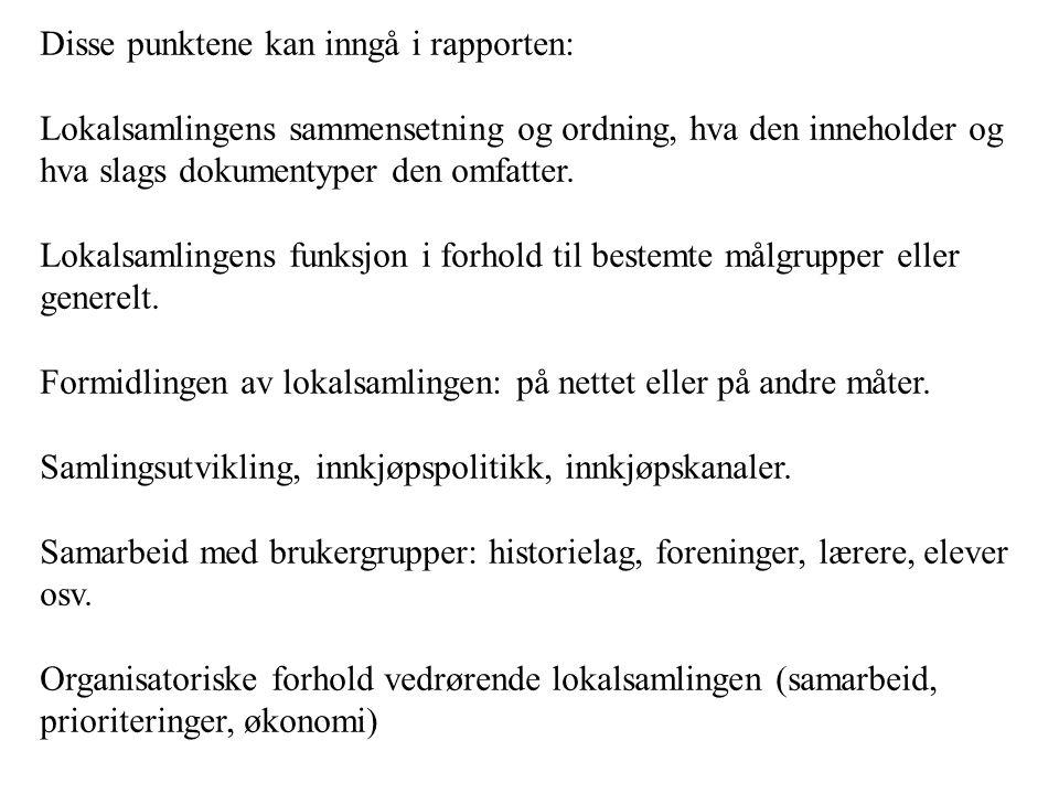 Disse punktene kan inngå i rapporten: Lokalsamlingens sammensetning og ordning, hva den inneholder og hva slags dokumentyper den omfatter. Lokalsamlin