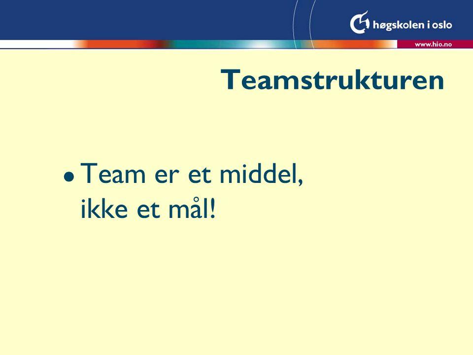 Teamstrukturen l Team er et middel, ikke et mål!