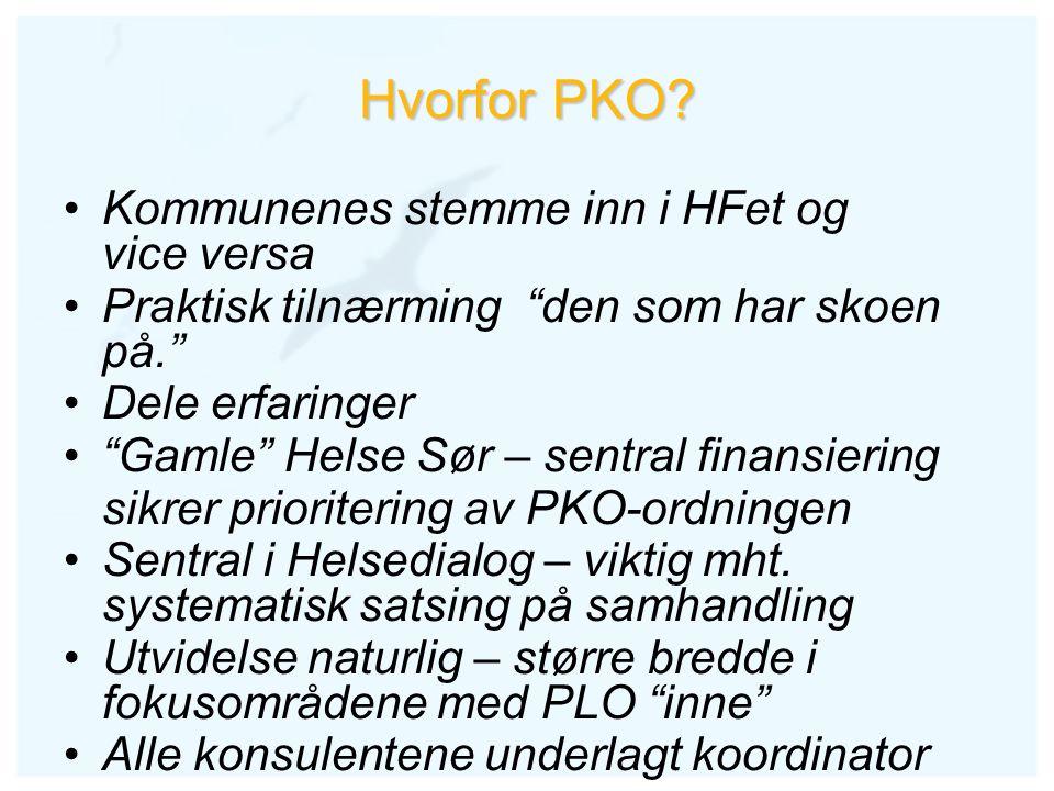 """Hvorfor PKO? Kommunenes stemme inn i HFet og vice versa Praktisk tilnærming """"den som har skoen på."""" Dele erfaringer """"Gamle"""" Helse Sør – sentral finans"""