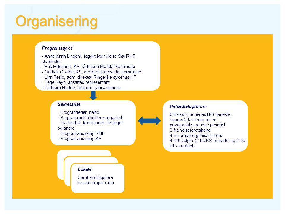 Organisering Helsedialogforum 6 fra kommunenes H/S tjeneste, hvorav 2 fastleger og en privatpraktiserende spesialist 3 fra helseforetakene 4 fra bruke