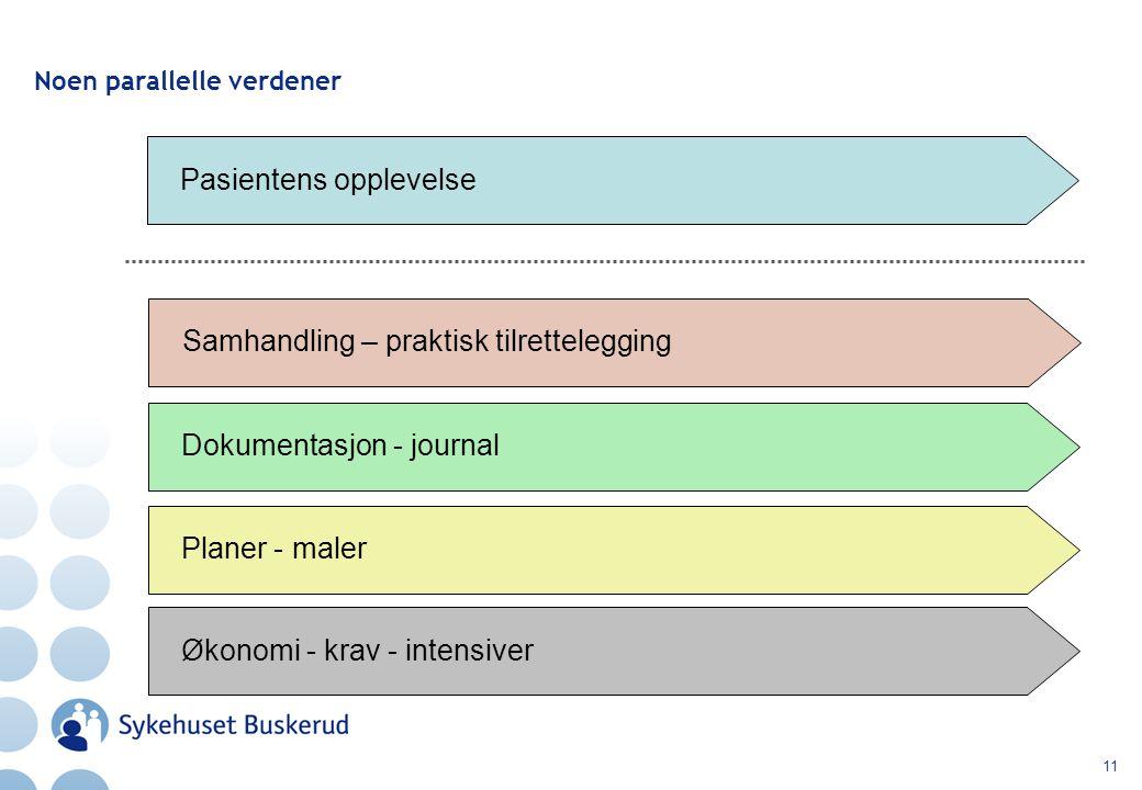 11 Noen parallelle verdener Pasientens opplevelse Samhandling – praktisk tilrettelegging Dokumentasjon - journal Planer - maler Økonomi - krav - intensiver