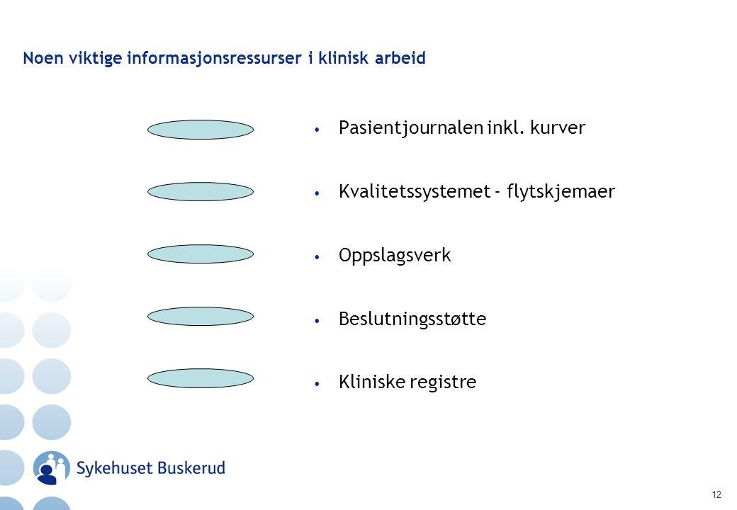 12 Noen viktige informasjonsressurser i klinisk arbeid Pasientjournalen inkl.