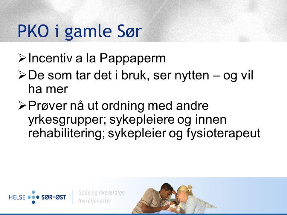 PKO ordningene i gamle Helse Sør Budsjett for 2007: til sammen 55 PKO'er 9 stk fra andre yrkesgrupper enn leger (SiV, SS, SB, SSR) Total kostnad (ekskl admin) vel 7 mill