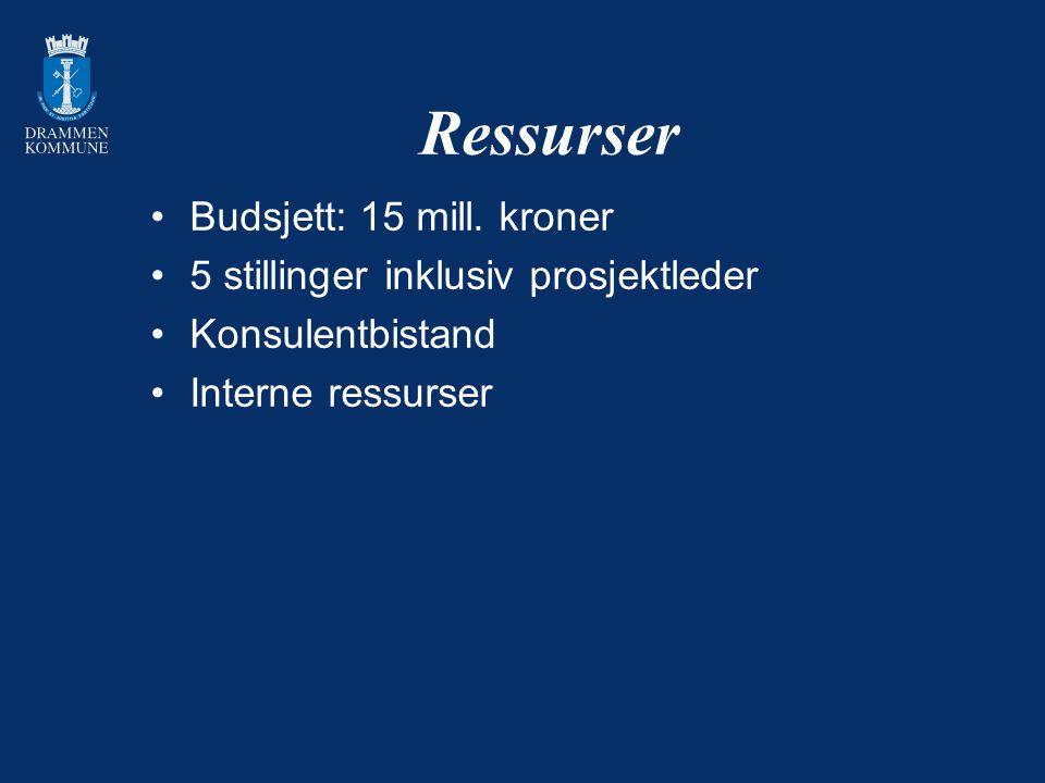 Ressurser Budsjett: 15 mill. kroner 5 stillinger inklusiv prosjektleder Konsulentbistand Interne ressurser