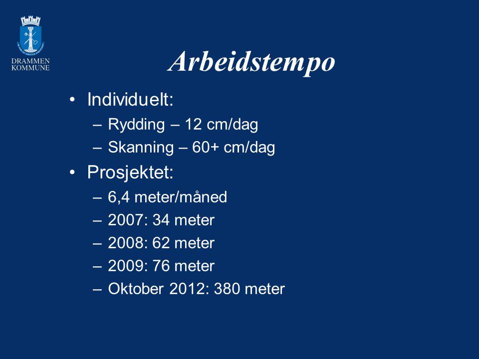 Arbeidstempo Individuelt: –Rydding – 12 cm/dag –Skanning – 60+ cm/dag Prosjektet: –6,4 meter/måned –2007: 34 meter –2008: 62 meter –2009: 76 meter –Ok