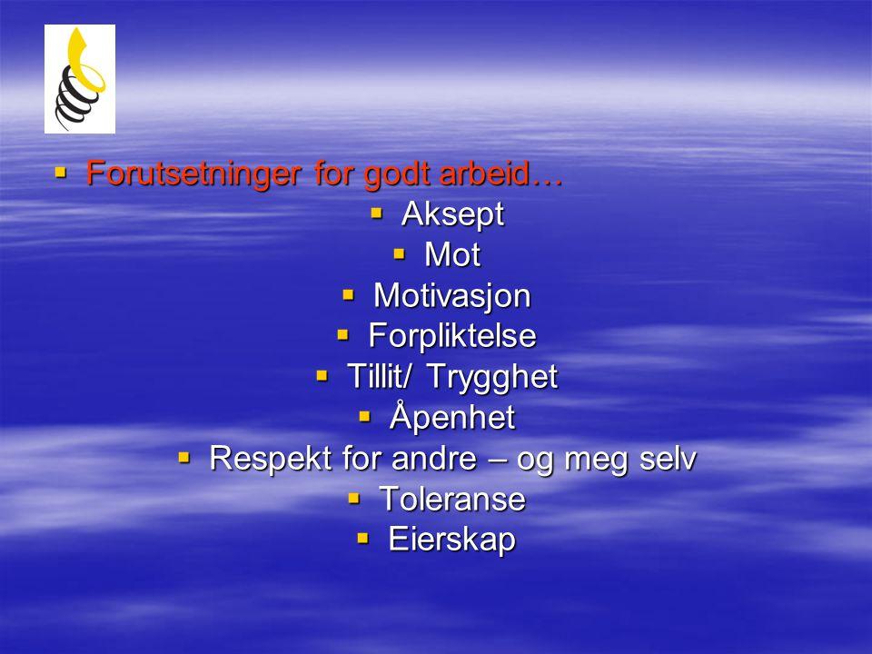  Forutsetninger for godt arbeid…  Aksept  Mot  Motivasjon  Forpliktelse  Tillit/ Trygghet  Åpenhet  Respekt for andre – og meg selv  Toleranse  Eierskap