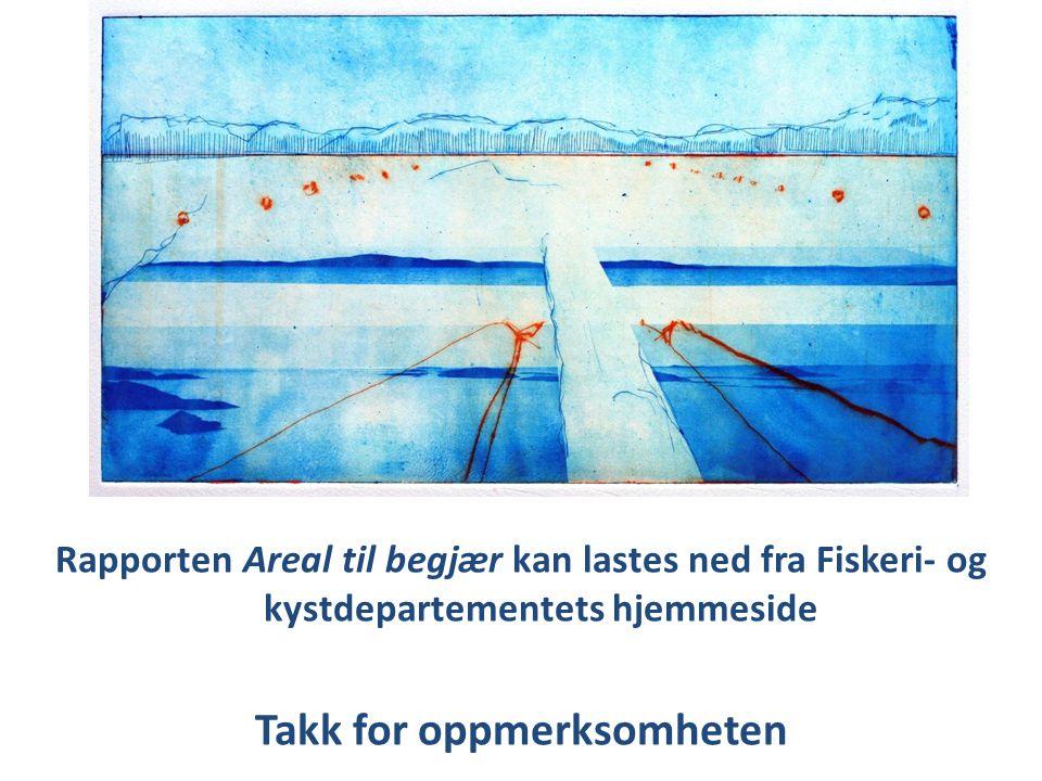 Rapporten Areal til begjær kan lastes ned fra Fiskeri- og kystdepartementets hjemmeside Takk for oppmerksomheten