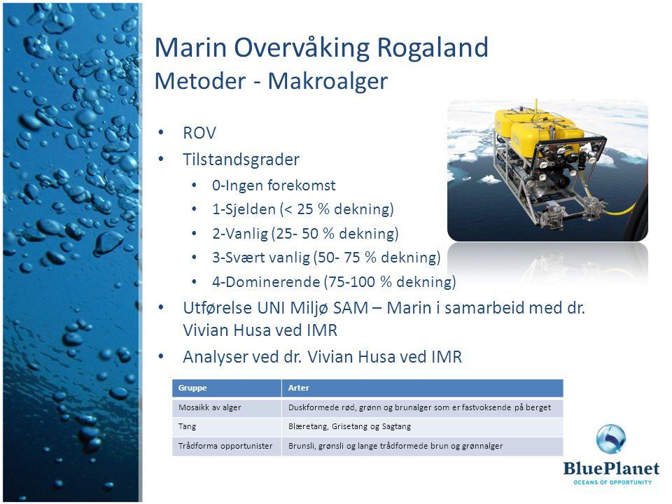 Marin Overvåking Rogaland Metoder - Makroalger ROV Tilstandsgrader 0-Ingen forekomst 1-Sjelden (< 25 % dekning) 2-Vanlig (25- 50 % dekning) 3-Svært vanlig (50- 75 % dekning) 4-Dominerende (75-100 % dekning) Utførelse UNI Miljø SAM – Marin i samarbeid med dr.