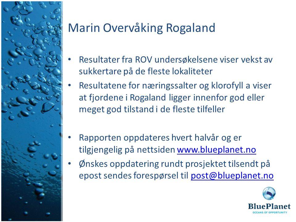 Marin Overvåking Rogaland Resultater fra ROV undersøkelsene viser vekst av sukkertare på de fleste lokaliteter Resultatene for næringssalter og klorof