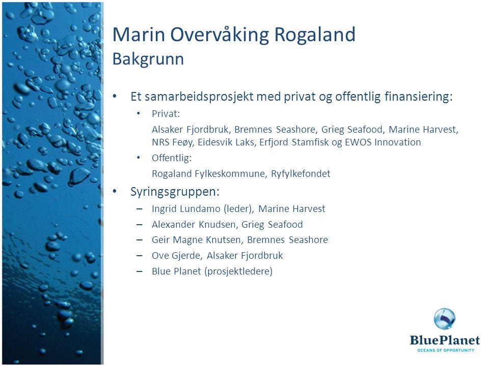 Marin Overvåking Rogaland Bakgrunn Et samarbeidsprosjekt med privat og offentlig finansiering: Privat: Alsaker Fjordbruk, Bremnes Seashore, Grieg Seaf