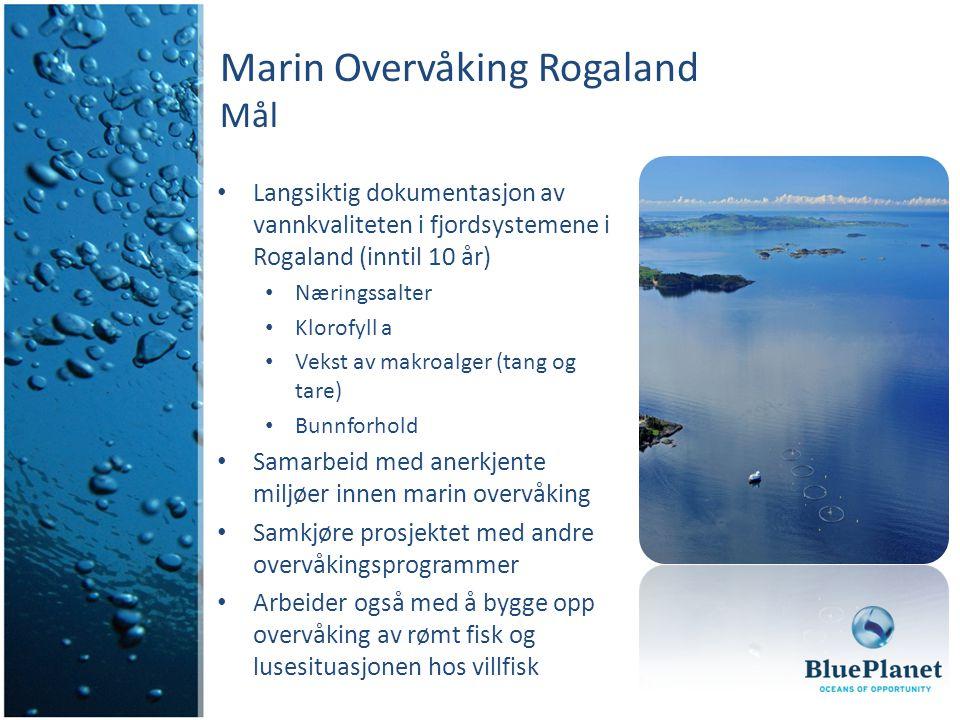 Marin Overvåking Rogaland Mål Langsiktig dokumentasjon av vannkvaliteten i fjordsystemene i Rogaland (inntil 10 år) Næringssalter Klorofyll a Vekst av makroalger (tang og tare) Bunnforhold Samarbeid med anerkjente miljøer innen marin overvåking Samkjøre prosjektet med andre overvåkingsprogrammer Arbeider også med å bygge opp overvåking av rømt fisk og lusesituasjonen hos villfisk
