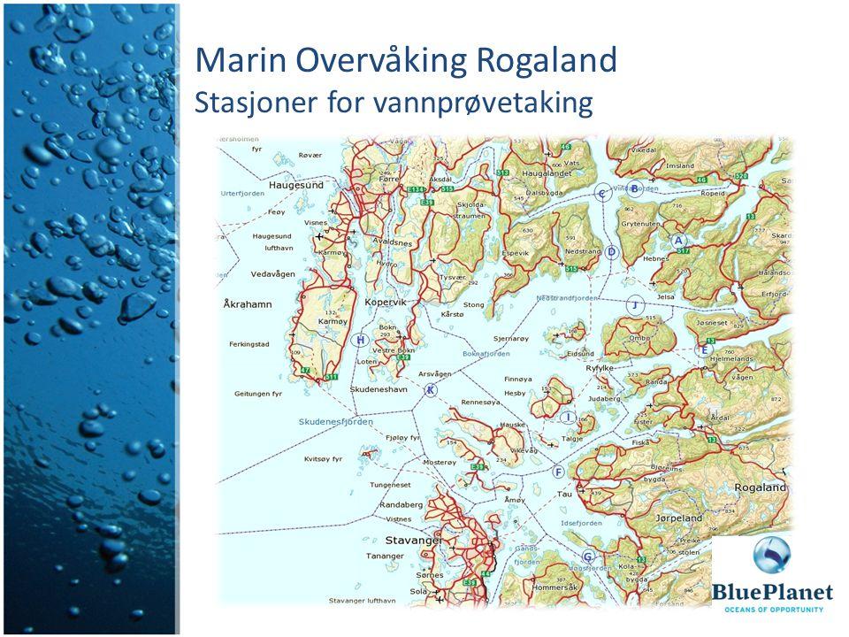 Marin Overvåking Rogaland Stasjoner for makroalgeprøvetaking