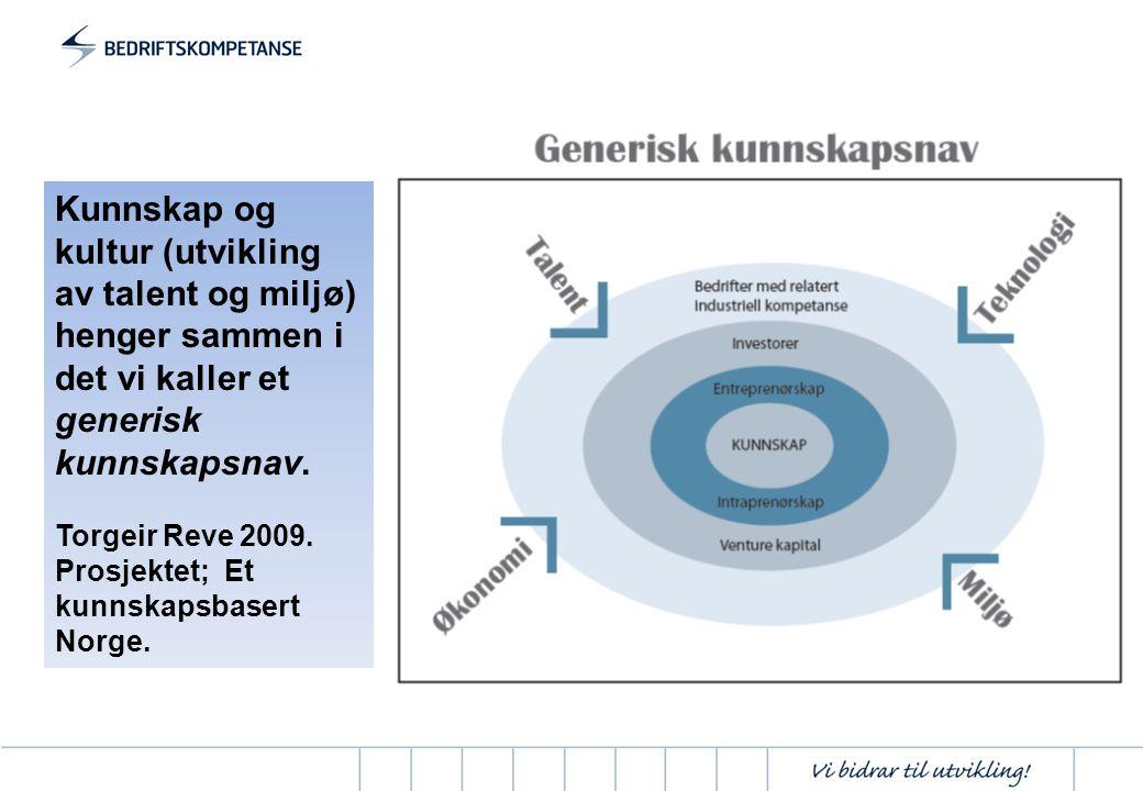 Kunnskap og kultur (utvikling av talent og miljø) henger sammen i det vi kaller et generisk kunnskapsnav. Torgeir Reve 2009. Prosjektet; Et kunnskapsb