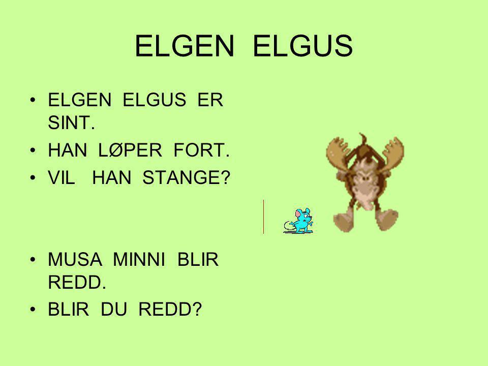 ELGEN ELGUS ELGEN ELGUS ER SINT. HAN LØPER FORT. VIL HAN STANGE? MUSA MINNI BLIR REDD. BLIR DU REDD?