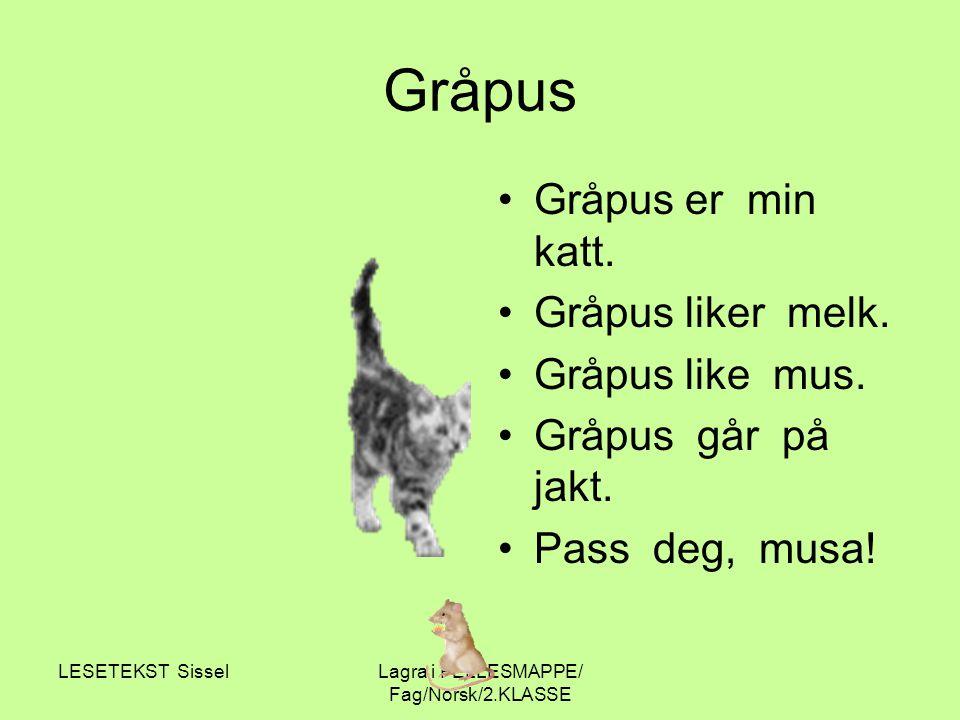 LESETEKST SisselLagra i FELLESMAPPE/ Fag/Norsk/2.KLASSE Gråpus Gråpus er min katt. Gråpus liker melk. Gråpus like mus. Gråpus går på jakt. Pass deg, m