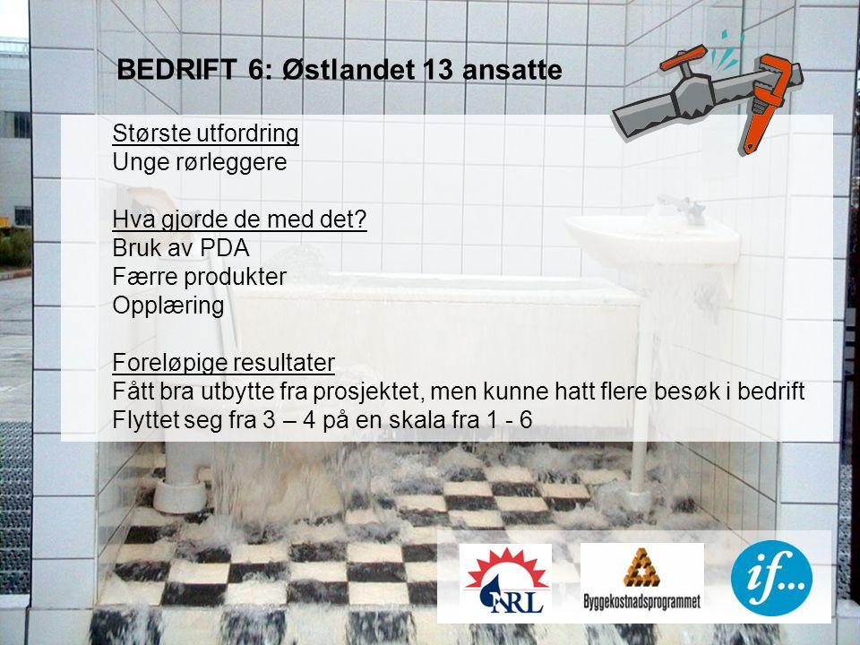 BEDRIFT 6: Østlandet 13 ansatte Største utfordring Unge rørleggere Hva gjorde de med det.