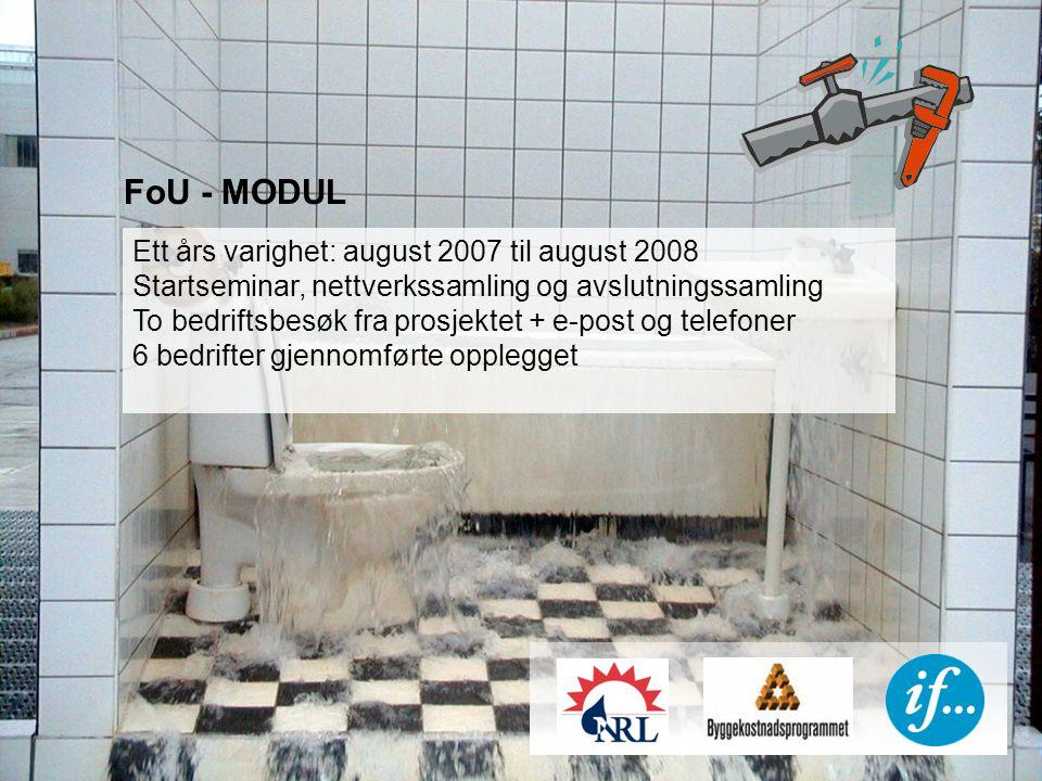 FoU - MODUL Ett års varighet: august 2007 til august 2008 Startseminar, nettverkssamling og avslutningssamling To bedriftsbesøk fra prosjektet + e-post og telefoner 6 bedrifter gjennomførte opplegget